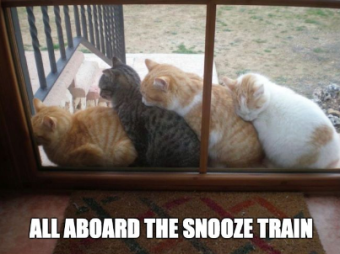 snooze train.png