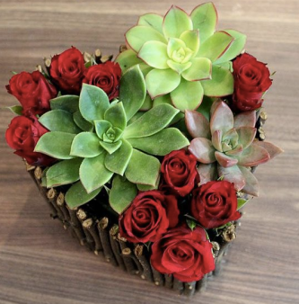 rose-variety-1