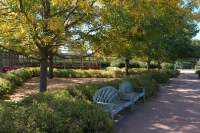 uiuc_arboretum_20070922_img_16671
