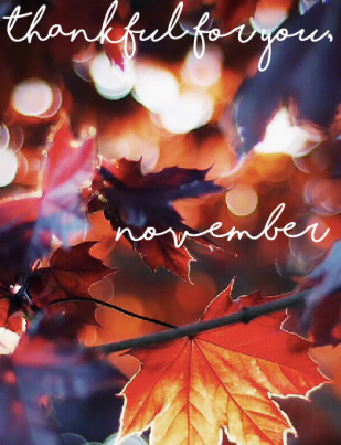 november-header-image