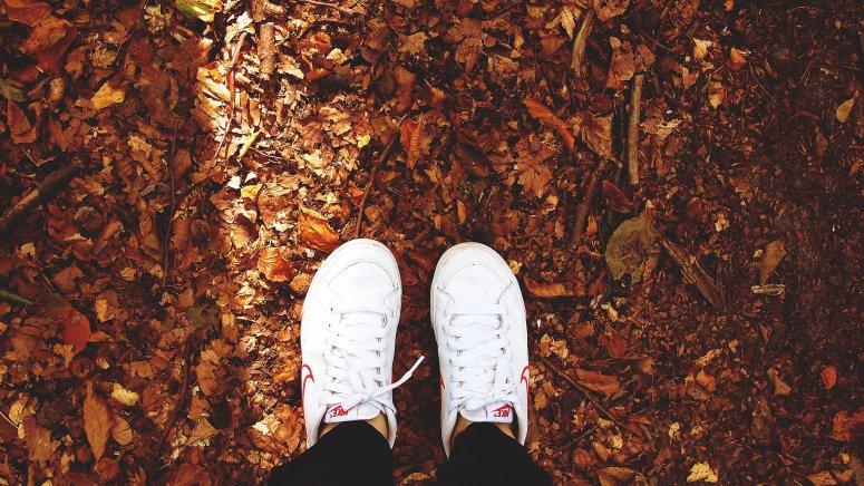 Cover Image November Music Favorites