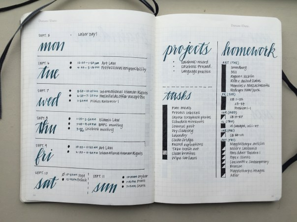 bullet journal-plain