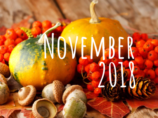 November 2018 Featured Image
