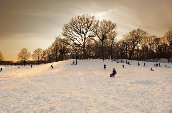 the-sledding-hill-dusk