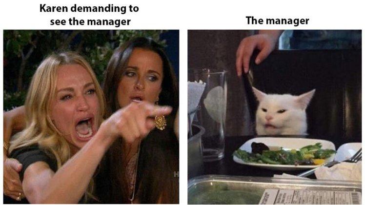 womanyellingatcat